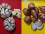 manfaat bawang putih dan bawang merah